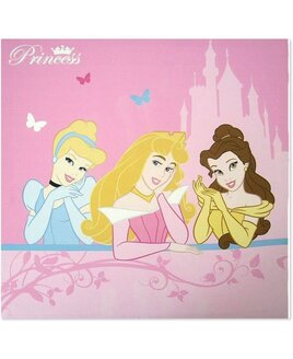 Pink Wall Canvas with Cinderella, Belle and Sleeping Beauty - Disney Princess Theme.