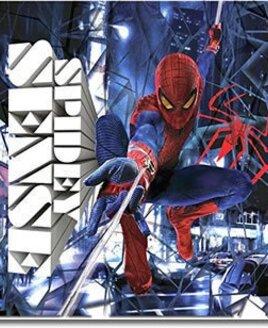 30 x 30 cm Spiderman Wall Canvas